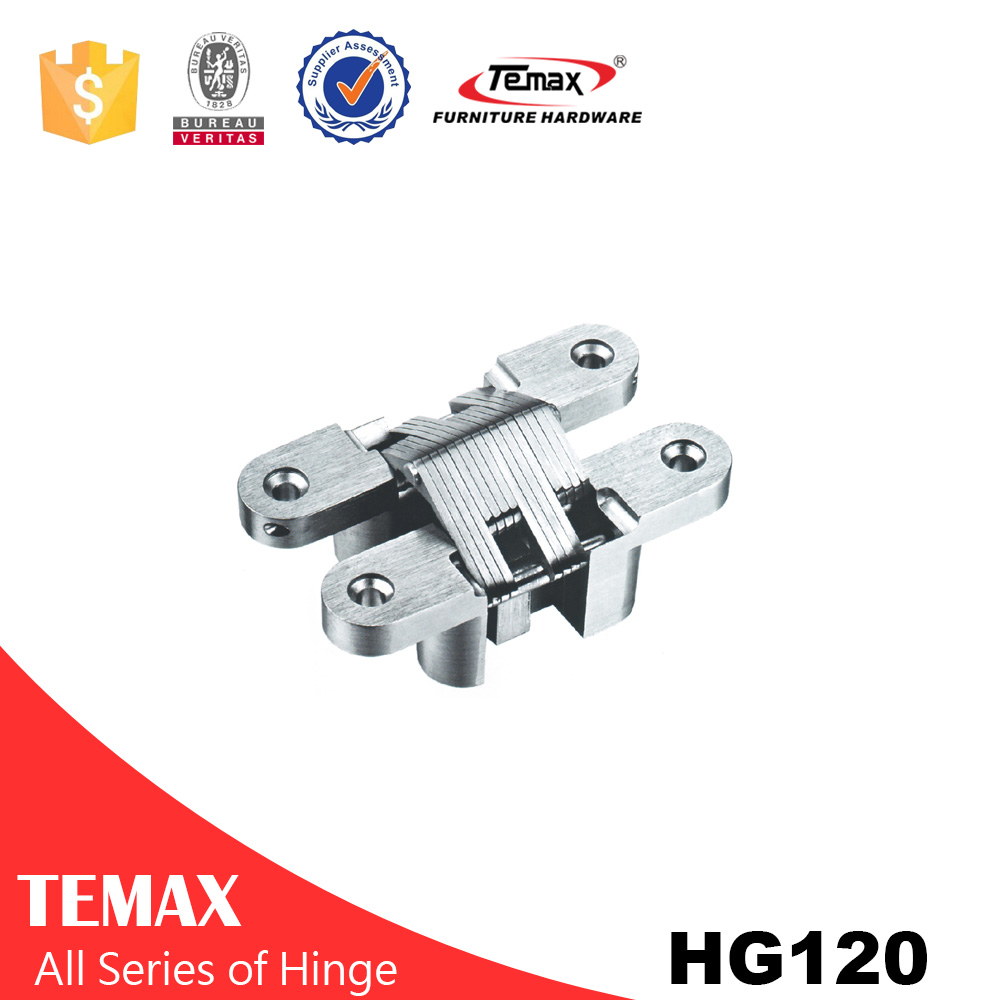 HG120 Zinc alloy invisible rotating hinge