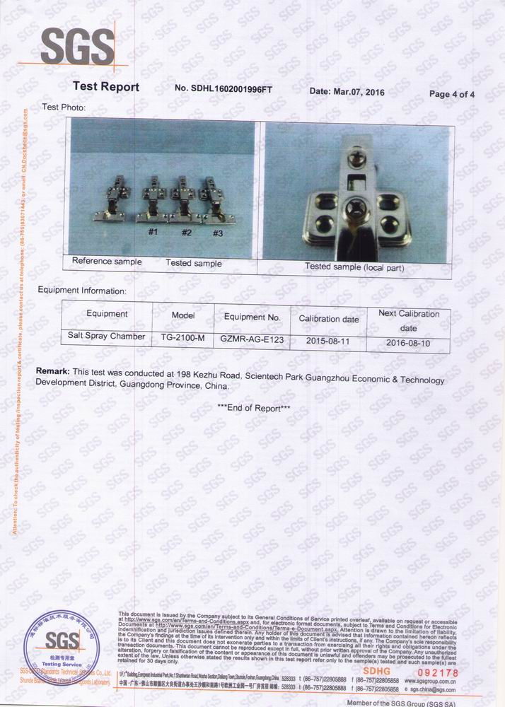 SGS Test Report of HBS11