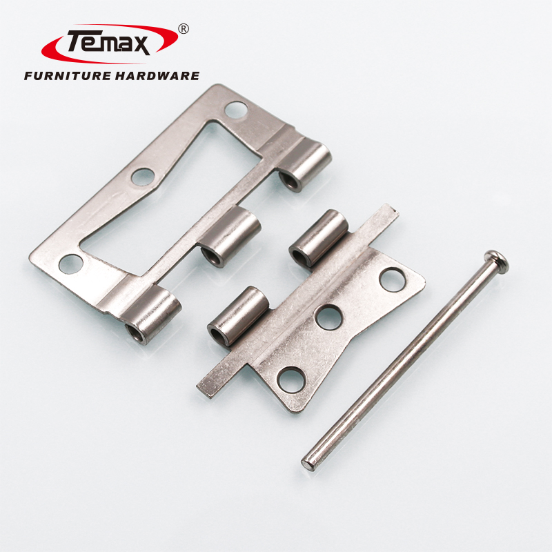 Temax American style Lash hinge RV hinge for touring car HT197-1